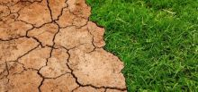 Ley de Cambio Climático. Justicia climática y trabajos decentes