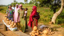 Día Internacional de la Mujer:Las diferencias de género relacionadas con el trabajo persisten, pero las soluciones son evidentes, señala un nuevo informe de la OIT