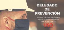 El delegado de prevención frente a los riesgos psicosociales