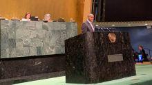 La Asamblea General de las Naciones Unidas refrenda la Declaración del centenario de la OIT sobre el futuro del trabajo